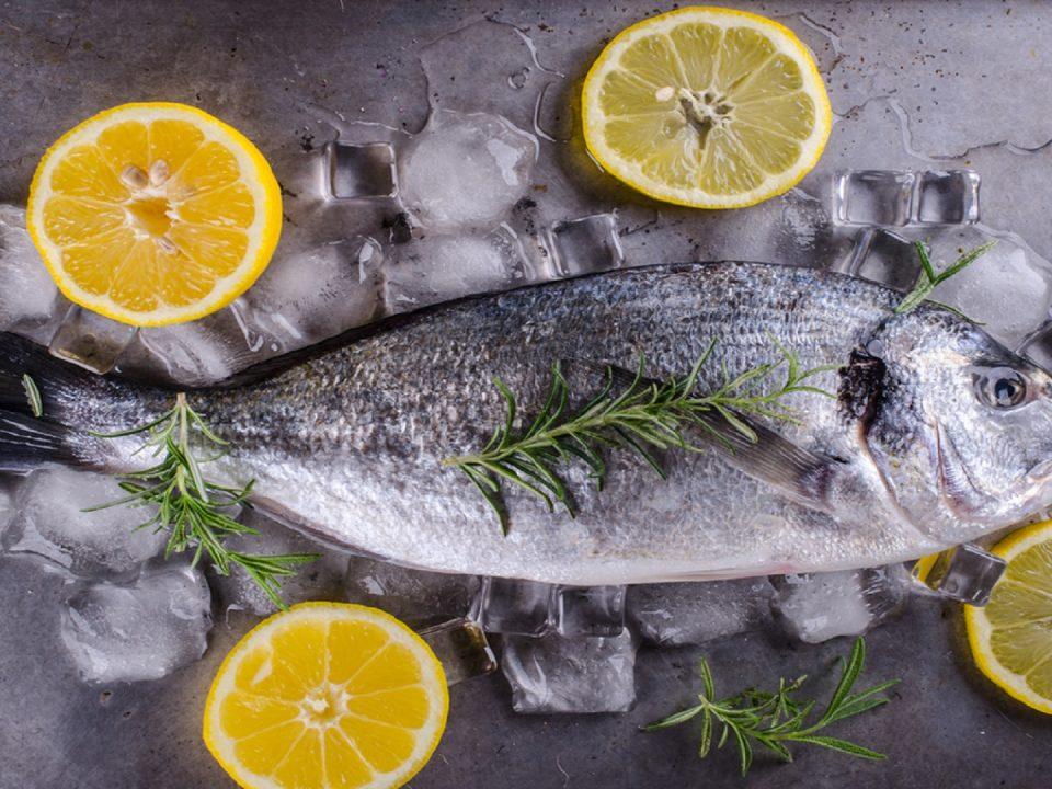 tiefgefrorene fischprodukte